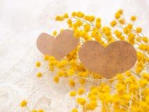 Dois corações com mimosa fotografia de stock royalty free