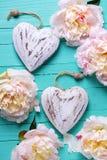Dois corações decorativos e as peônias cor-de-rosa florescem na turquesa w Imagem de Stock Royalty Free
