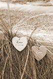 Dois corações do amor do sepia em dunas gramíneas fotografia de stock royalty free