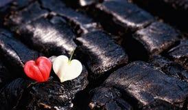 Dois corações em carvões imagens de stock