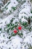 Dois corações feitos a mão do Valentim do feltro na árvore de Natal com neve Imagens de Stock Royalty Free