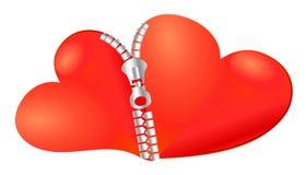 Dois corações juntados junto Fotos de Stock Royalty Free