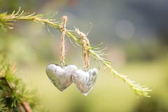 Dois corações pequenos do metal que penduram em umas coníferas verdes ramificam em uma corda marrom com o jardim no fundo fotografia de stock royalty free