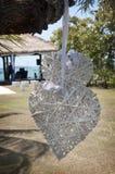 Dois corações que Wedding a decoração que balança da árvore Foto de Stock