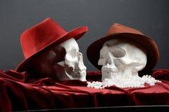 Dois crânios Foto de Stock Royalty Free