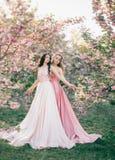 Dois delicados, duendes incríveis andam no jardim fabuloso da flor de cerejeira As princesas em luxuoso, longo, rosa vestem-se foto de stock