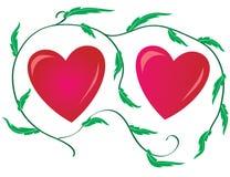 Dois dos corações Fotografia de Stock