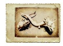 Dois dragões 2 da serpente Imagem de Stock Royalty Free
