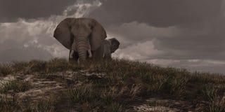 Dois elefantes africanos ilustração do vetor