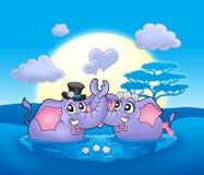 Dois elefantes com lua Imagem de Stock