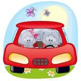 Dois elefantes em um carro Fotografia de Stock Royalty Free