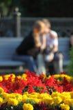 Dois em um banco no parque Foto de Stock Royalty Free
