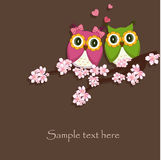Dois engraçados, amam a coruja Foto de Stock Royalty Free