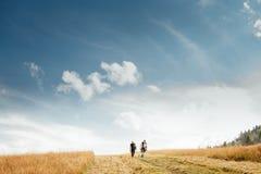 Dois equipam a caminhada no campo dourado sob o céu azul imagens de stock