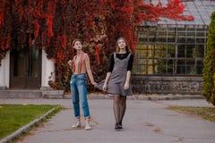 Dois estudantes bonitos que andam no parque do outono imagens de stock