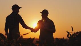 Dois fazendeiros falam no campo, a seguir agitam as mãos Use uma tabuleta fotografia de stock royalty free