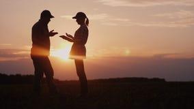 Dois fazendeiros trabalham no campo na noite no por do sol Um homem e uma mulher discutem algo, usam uma tabuleta imagem de stock
