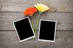 Dois flores do gerbera e quadros coloridos da foto Imagens de Stock Royalty Free