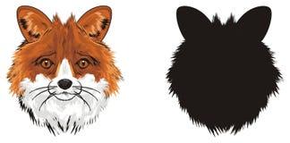 Dois focinhos das raposas ilustração do vetor