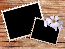Dois frames do fhoto do vintage na textura de madeira Fotos de Stock Royalty Free