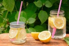 Dois frascos com limonada e palhas cor-de-rosa Arbusto verde no fundo a borrar imagem de stock