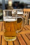 Dois frascos da cerveja Fotografia de Stock Royalty Free