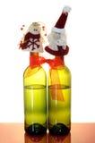 Dois frascos de vinho Foto de Stock