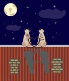 Dois gatos dos amantes no telhado Imagens de Stock
