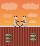 Dois gatos dos amantes no telhado Imagem de Stock Royalty Free