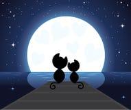Dois gatos no amor que prestam atenção na lua Fotos de Stock Royalty Free