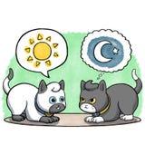 Dois gatos que enfrentam-se Imagem de Stock Royalty Free