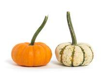 Dois Gourds isolados no branco imagens de stock