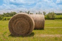 Dois grandes pacotes de feno redondos da grama Foto de Stock