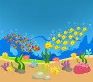 Dois grupos de indivíduos encontraram o oceano Imagem de Stock Royalty Free