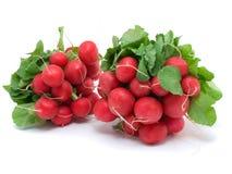 Dois grupos dos radishes Imagens de Stock