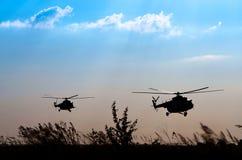Dois helicópteros Foto de Stock