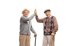 Dois homens idosos com gesticular dos bastões alto-cinco foto de stock royalty free