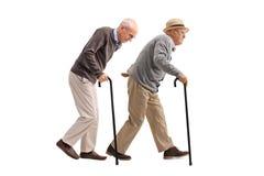 Dois homens idosos com passeio dos bastões Imagens de Stock Royalty Free
