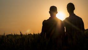 Dois homens que abraçam delicadamente no por do sol, vista traseira imagem de stock