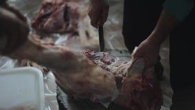 Dois homens que desbastam acima a carne crua Um guarda a parte Outro corta-o com uma faca Um close-up video estoque