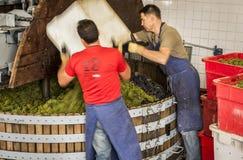 Dois homens que trabalham a imprensa de vinho Dizy Fotografia de Stock Royalty Free