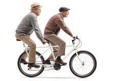 Dois homens superiores que montam uma bicicleta em tandem imagem de stock