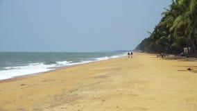 Dois indivíduos que andam na praia video estoque