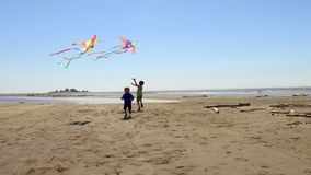 Dois irmãos felizes dos rapazes pequenos que correm com os papagaios na praia filme
