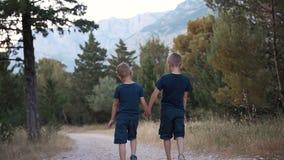 Dois irmãos novos vestiram-se na roupa escura, caminhada no parque do pinho no por do sol filme