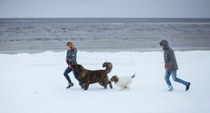Dois jovens e dois cachorrinhos que correm no inverno encalham Feriados românticos na costa de mar Fotografia de Stock