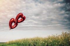 Dois leram ballons dados forma coração no céu fotografia de stock royalty free