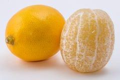 Dois limões no fundo branco Imagem de Stock