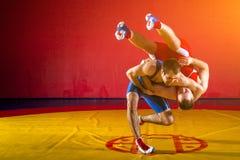 Dois lutadores dos homens novos Imagens de Stock Royalty Free