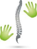 Dois mãos e logotipos da espinha, da ortopedia e da massagem ilustração do vetor